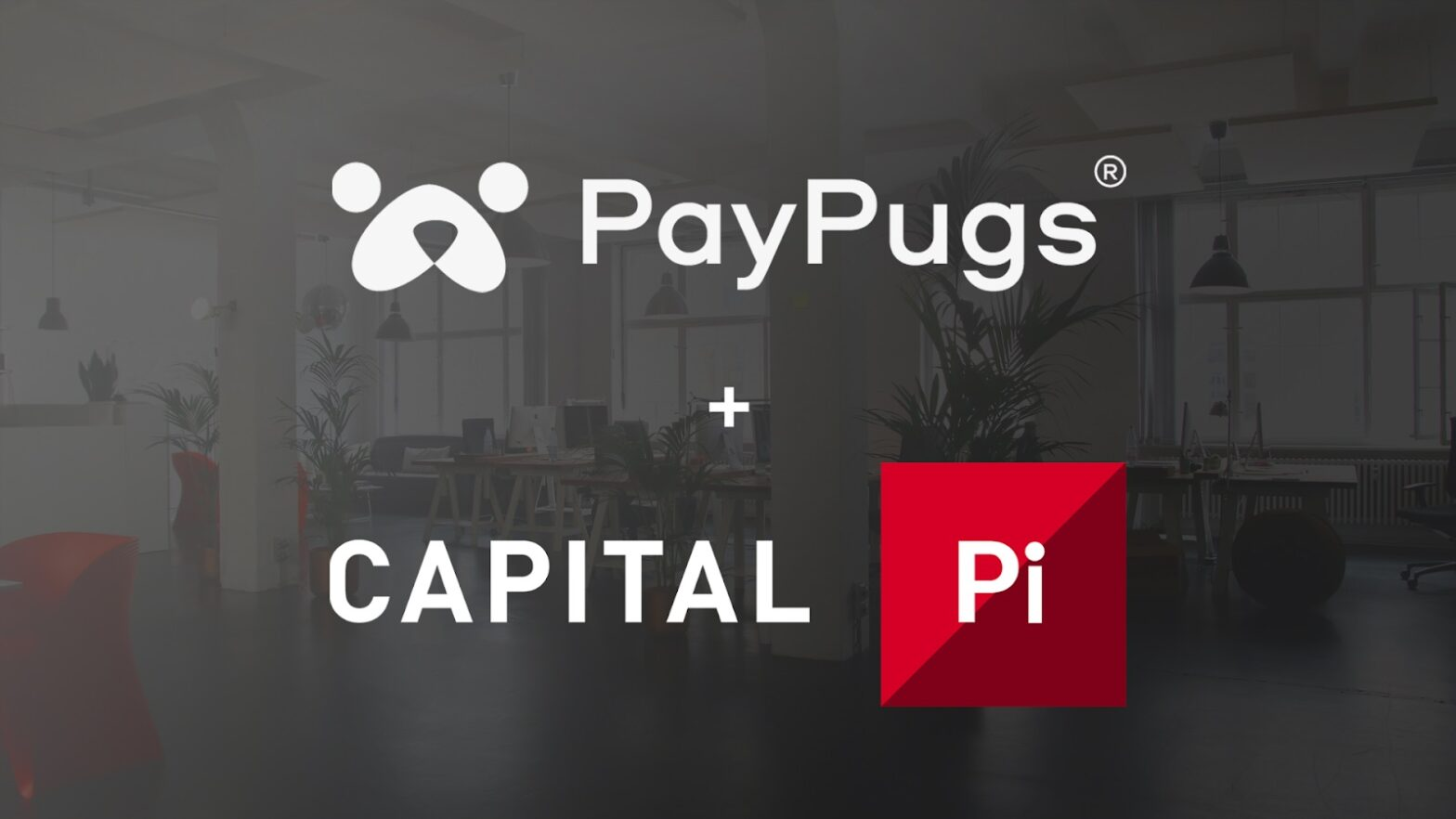 Paypugs Capital Llc Entered Into A Partnership Agreement With Capital PI BV HEADER